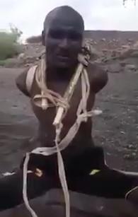 Torture from Zimbabwe | theYNC